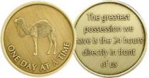 One Day At A Time Camel Bronze AA Coin