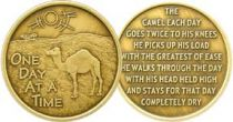 Camel One Day At A Time Bronze AA Coin with poem