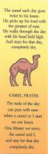 Camel Laminated Recovery Bookmark with choice of others